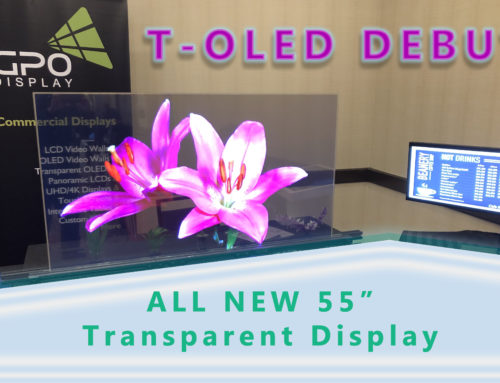 Muckle Sales & Brownstone Showcase T-OLED Debut